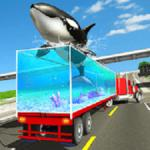 Sea Animal Transport