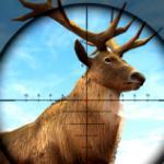 Wild Hunter